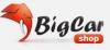 Bigcar сеть магазинов запасных частей для грузовых автомобилей биг кар